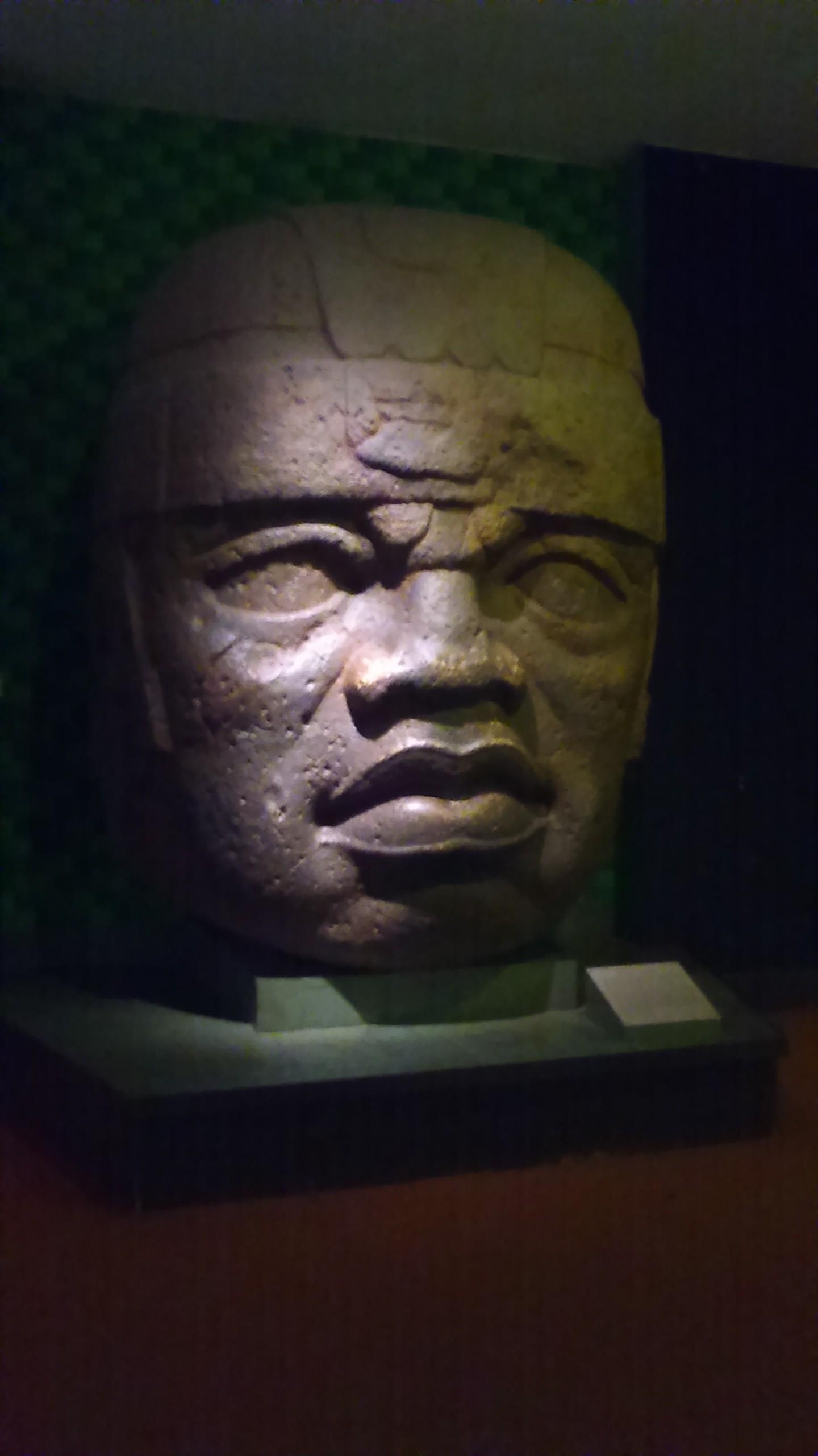 naturalhistory8