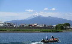 Ferry with Mount Fuji of Ganyudo of Numazu tourism - May 05 ~