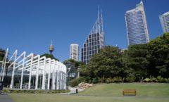 大都会シドニーの中の大自然『ロイヤル植物園』
