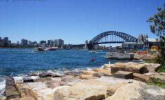 シドニーの再開発地区『バランガルー』を経由して