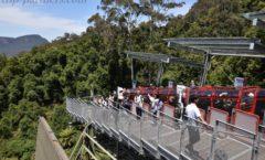 "2nd attractions of Scenic World ""Railway (Scenic Railway)"""
