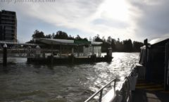 悉尼距離Parramatta  - 寒冷的水輪渡之旅 -