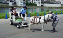 يعقد نومازو الكارب غاسل مهرجان Ryowa السنة الأولى في نهر كانو مجرى النهر! - يوم 1 -