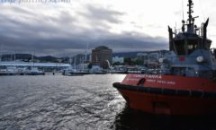 """That Charles Darwin was also visited 200 years ago in the Beagle """"Hobart harbor"""""""