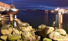 """Once published a night view of the Tasmanian tourist destination """"Hobart harbor""""!"""