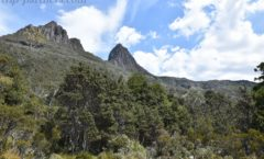 The sunny days per year less than 40 days? ! Miracle Cradle Mountain sunny tourism ②